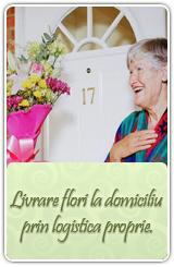 livrari flori bucuresti