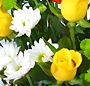 Simbioza florala