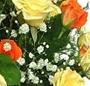 Cos trandafiri duo