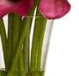 Cale roz