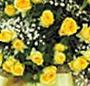 Cos trandafiri xl