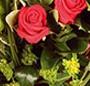 Trandafiri rosii deluxe