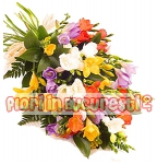 Buchet frezii multicolore