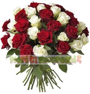 Trandafiri in contrast