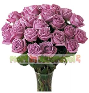 Trandafiri lila